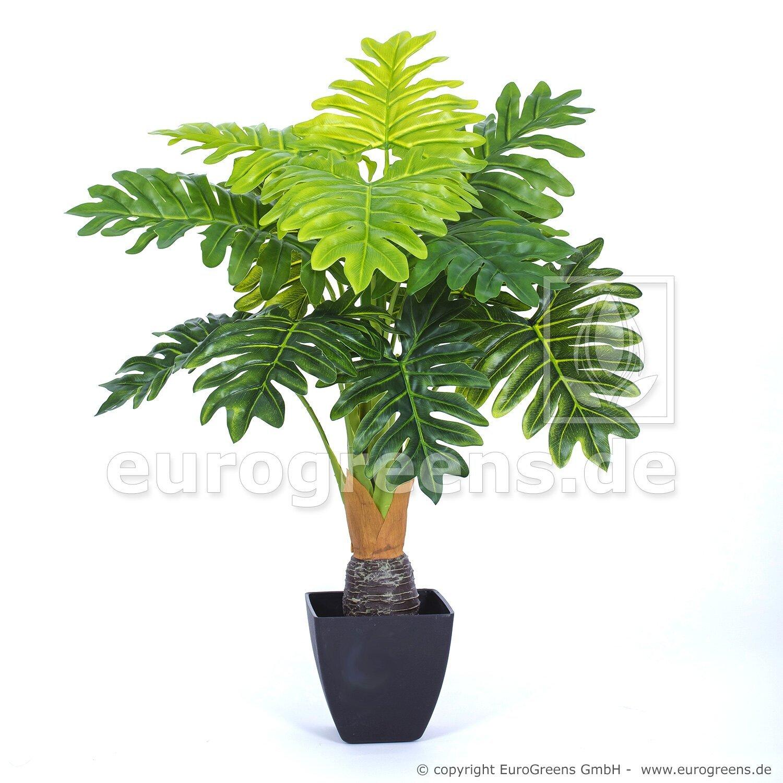 Umelá rastlina Split philo 75 cm