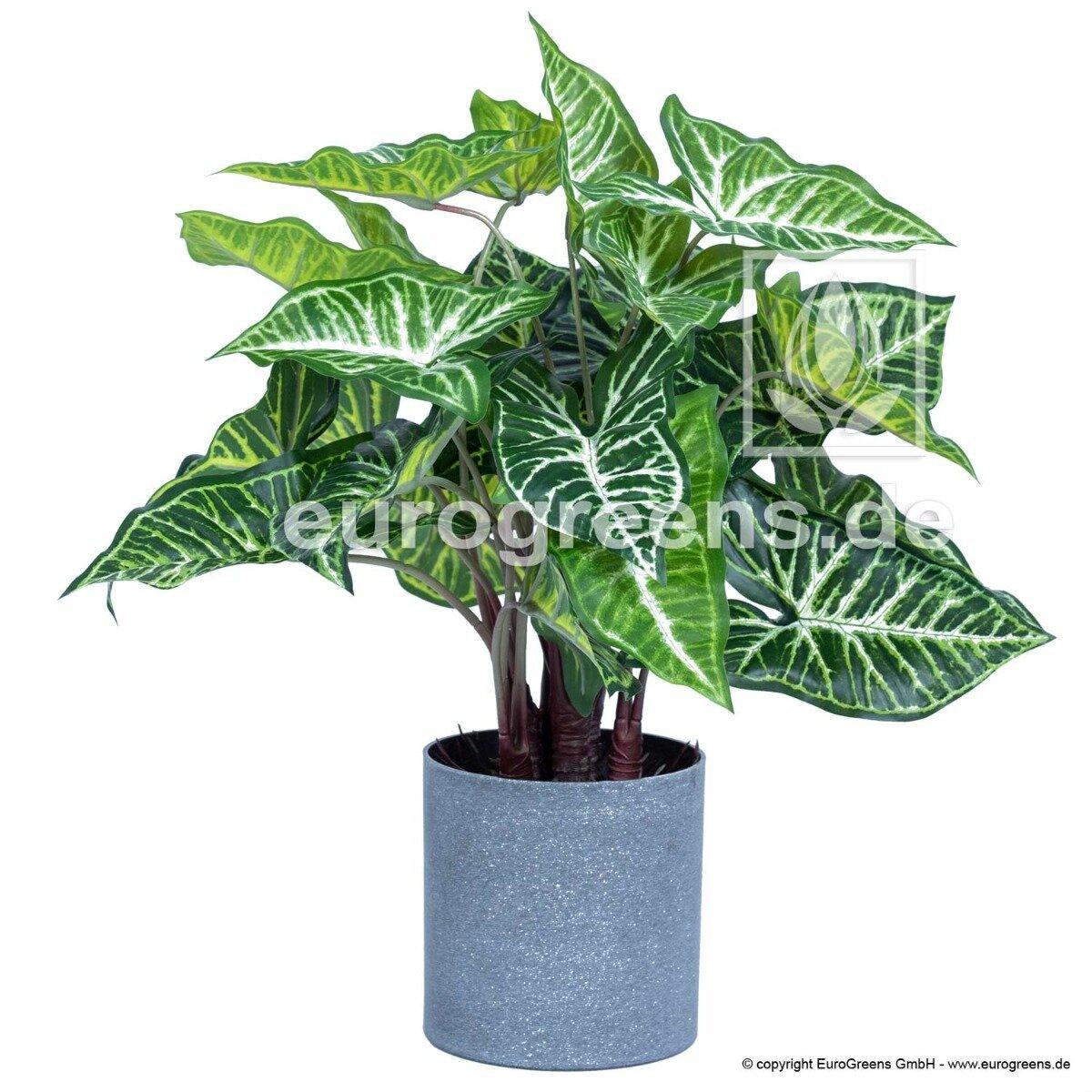 Umělá rostlina Kaladium 45 cm