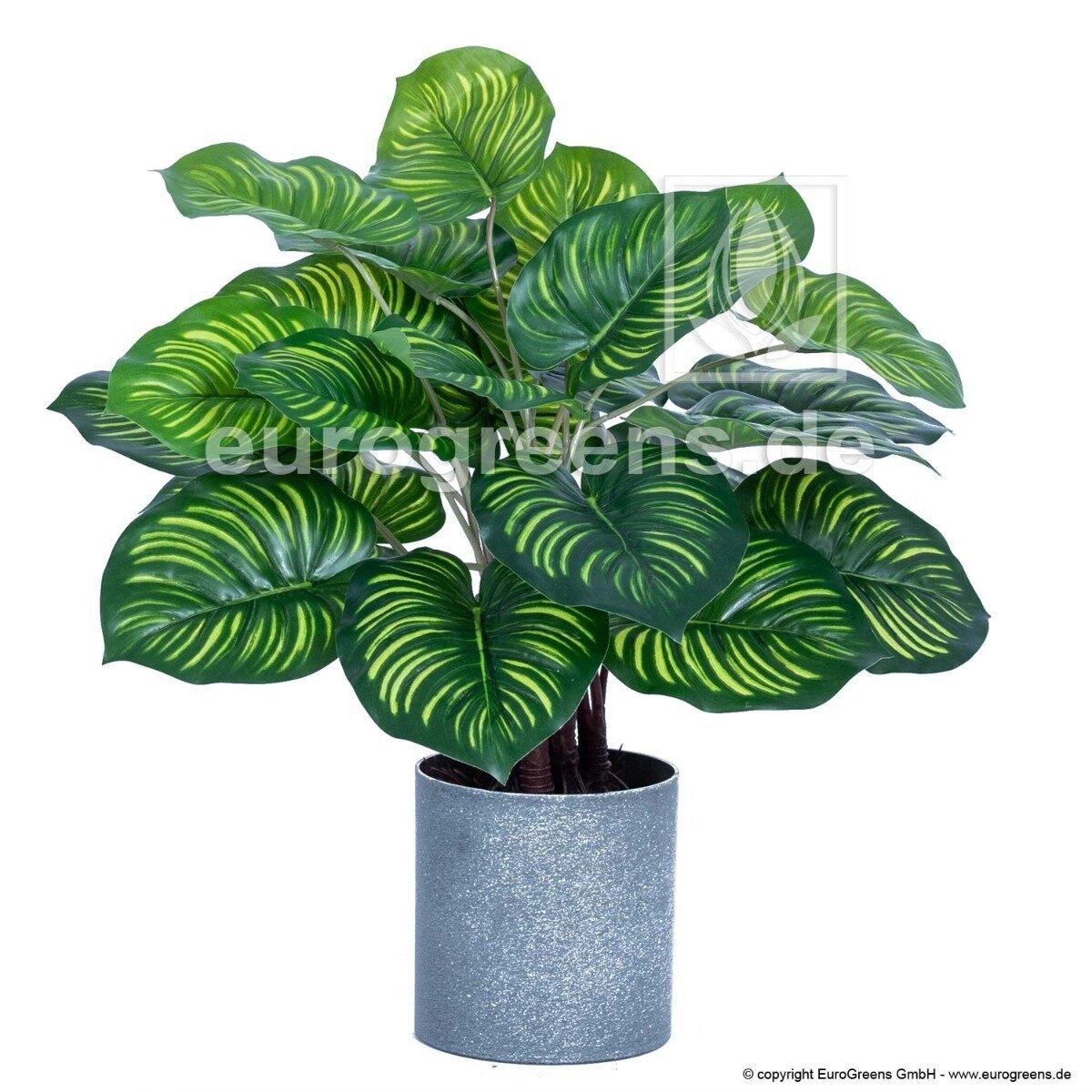 Umelá rastlina Kaládium 45 cm