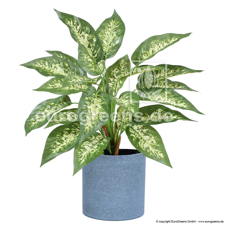 Umelá rastlina Dífenbachia 45 cm