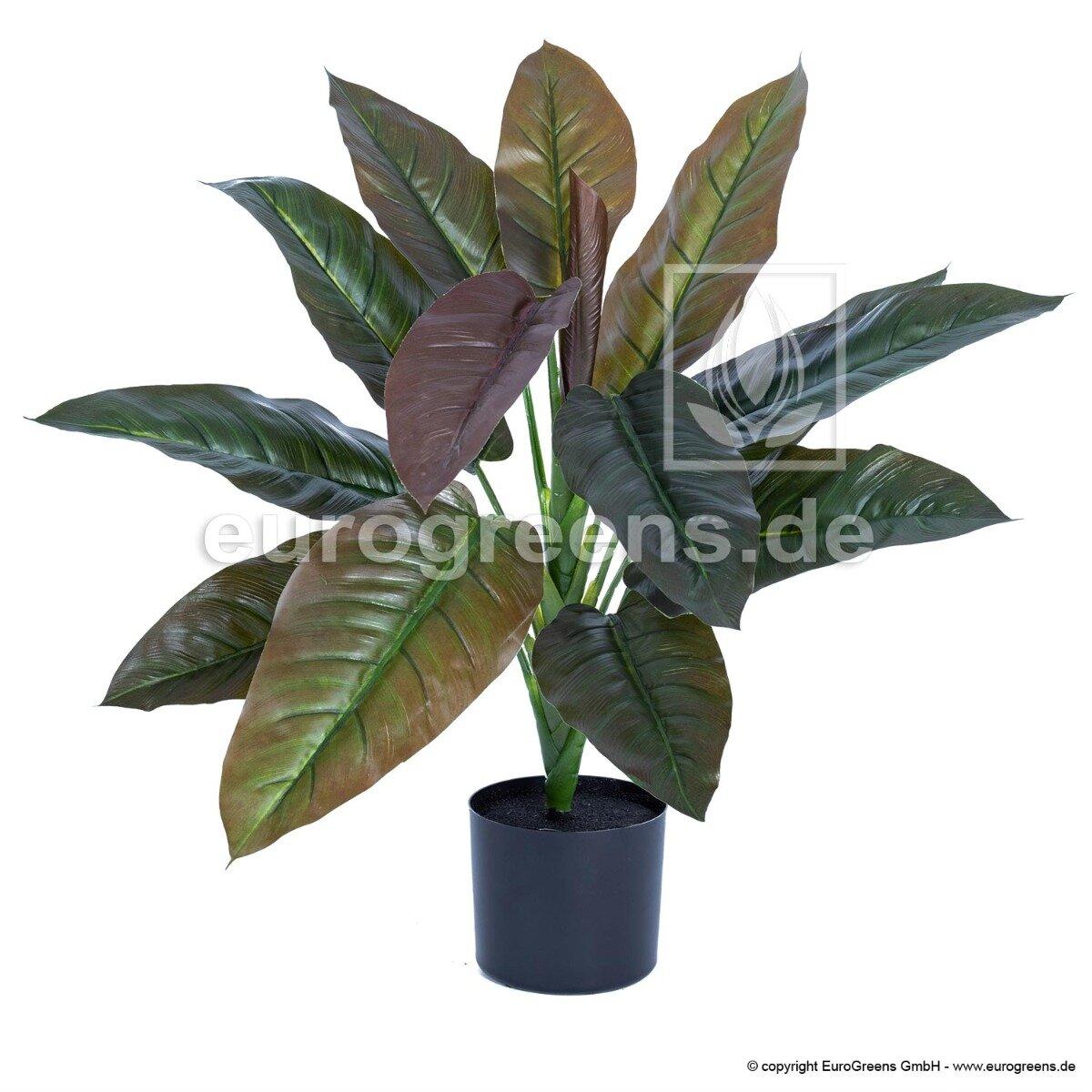 Umělá rostlina Philodendron Imperial Red 65cm