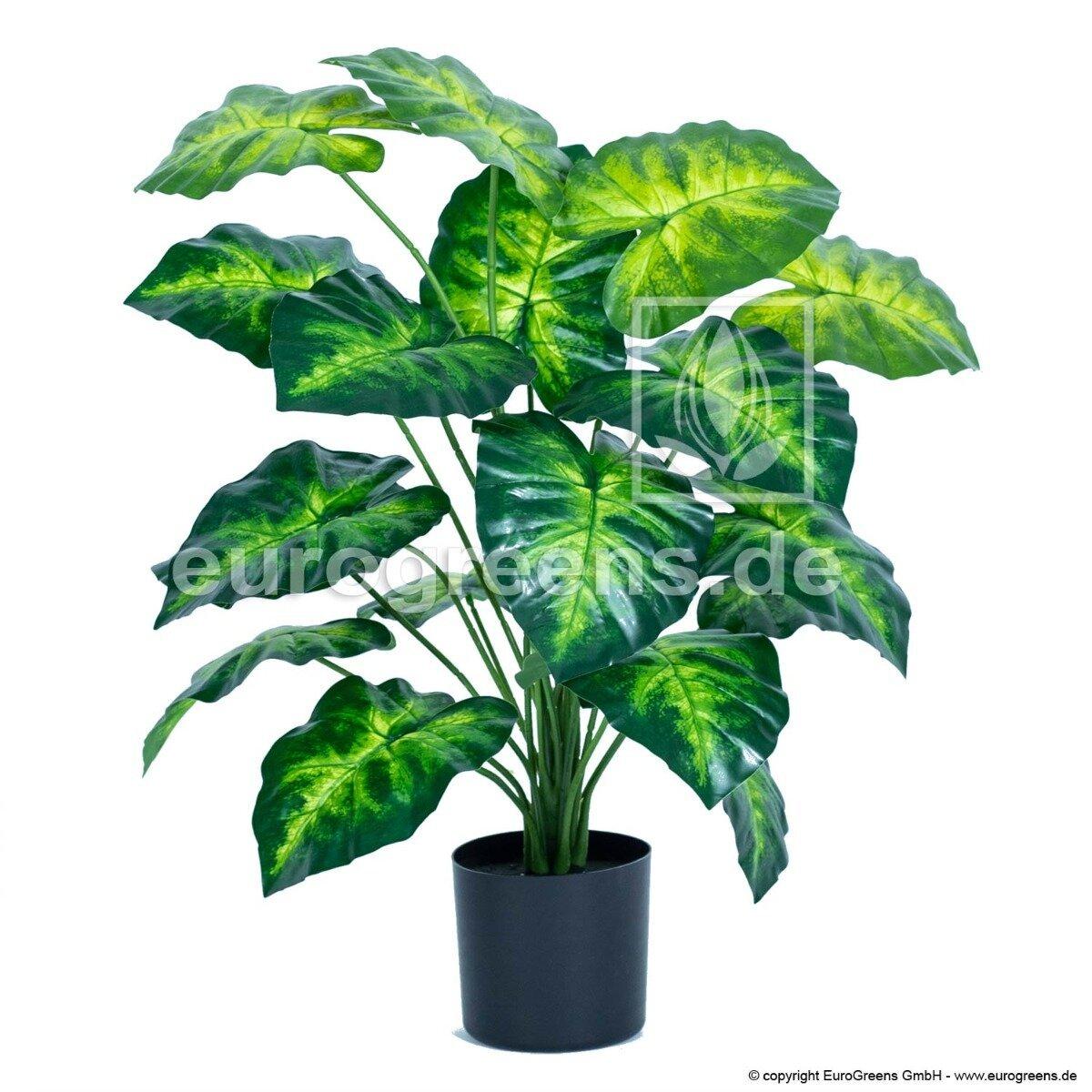 Umělá rostlina Syngonium stopkatolisté 70 cm