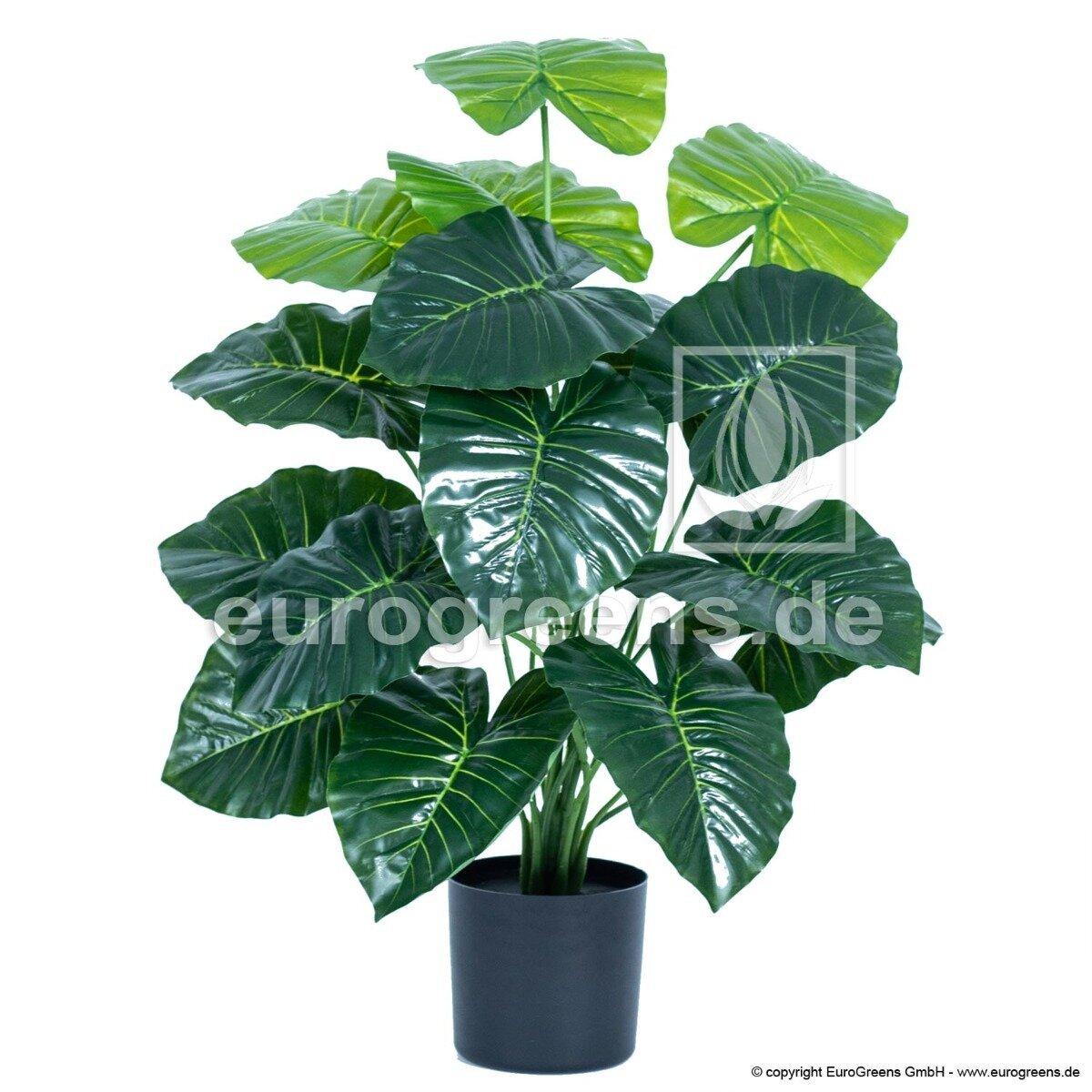 Umělá rostlina Alokázie 70 cm