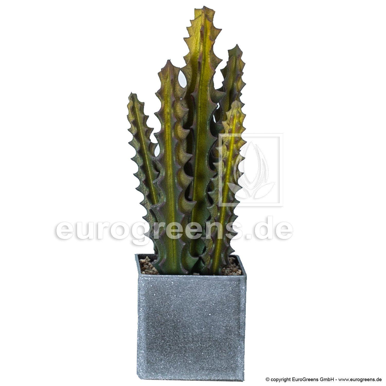 Umelá rastlina Kaktus mini 35cm