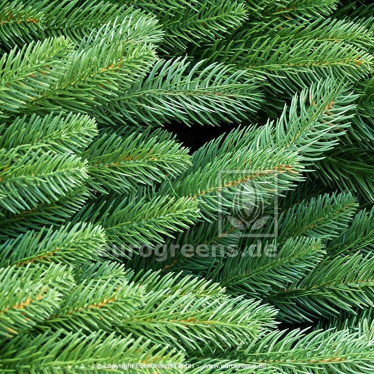 Větve vánočních stromků Jedle 100 ks 18-45 cm