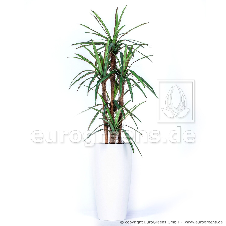Umelá rastlina Dracéna Marginata 140 cm