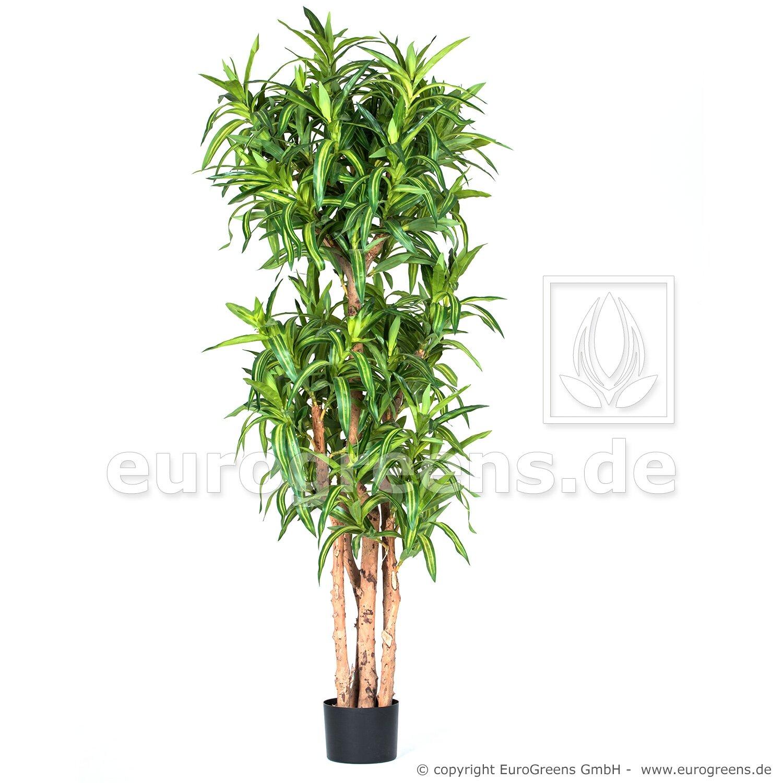 Umělá rostlina Dracena Compacta 150 cm
