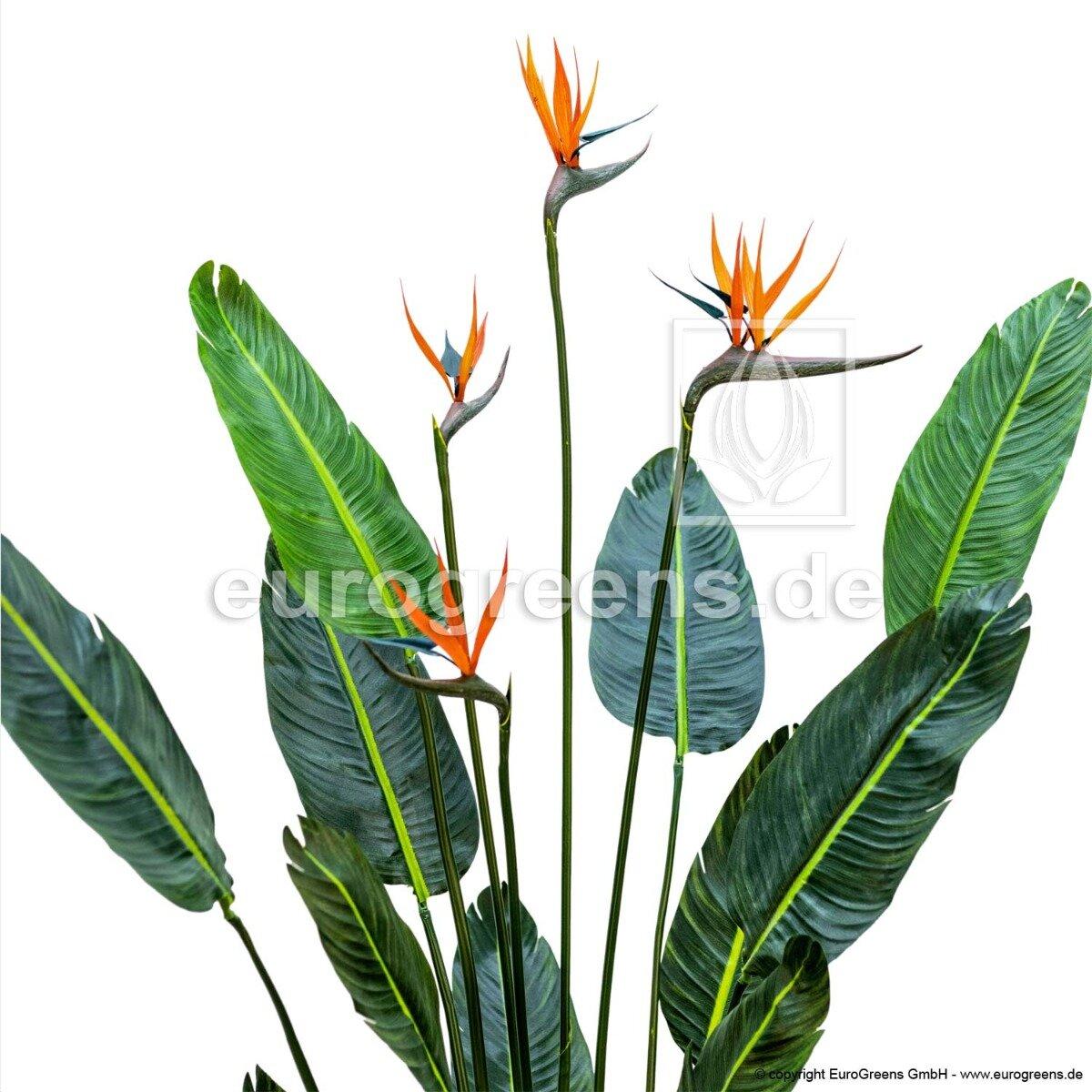 Umělá rostlina Strelície 150 cm