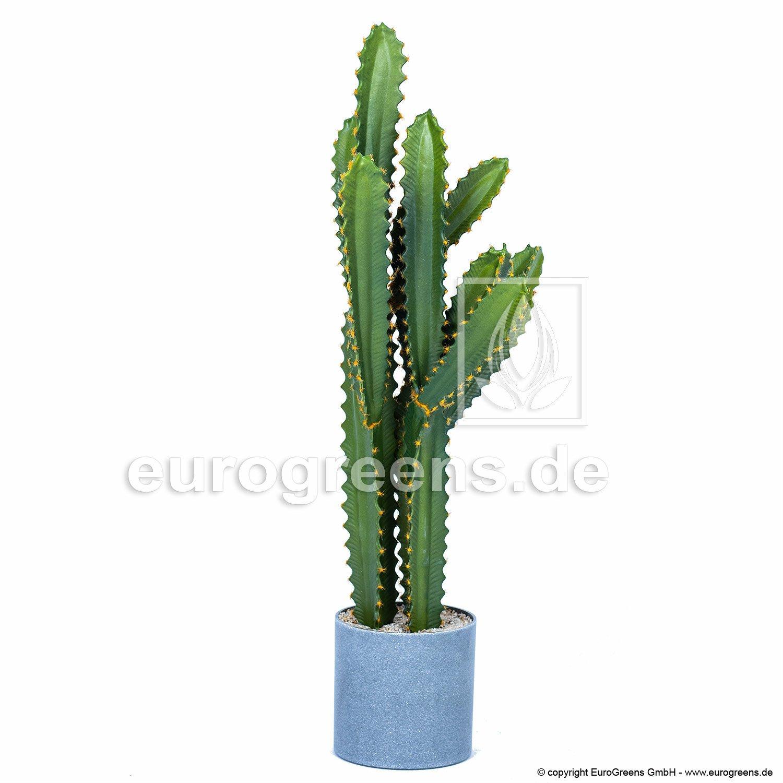 Umelý kaktus San Pedro 73 cm