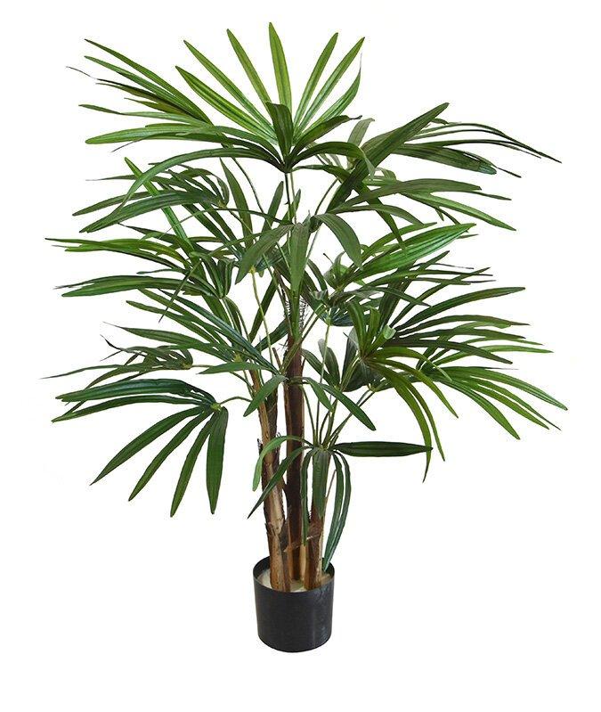 Umělá palma Rapis 75 cm
