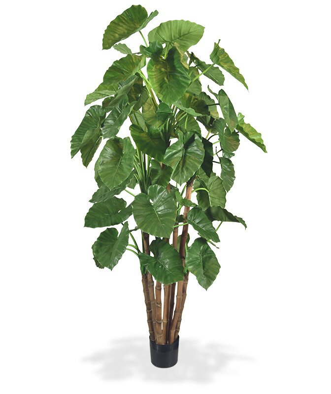 Umělý strom Alokázie 210 cm