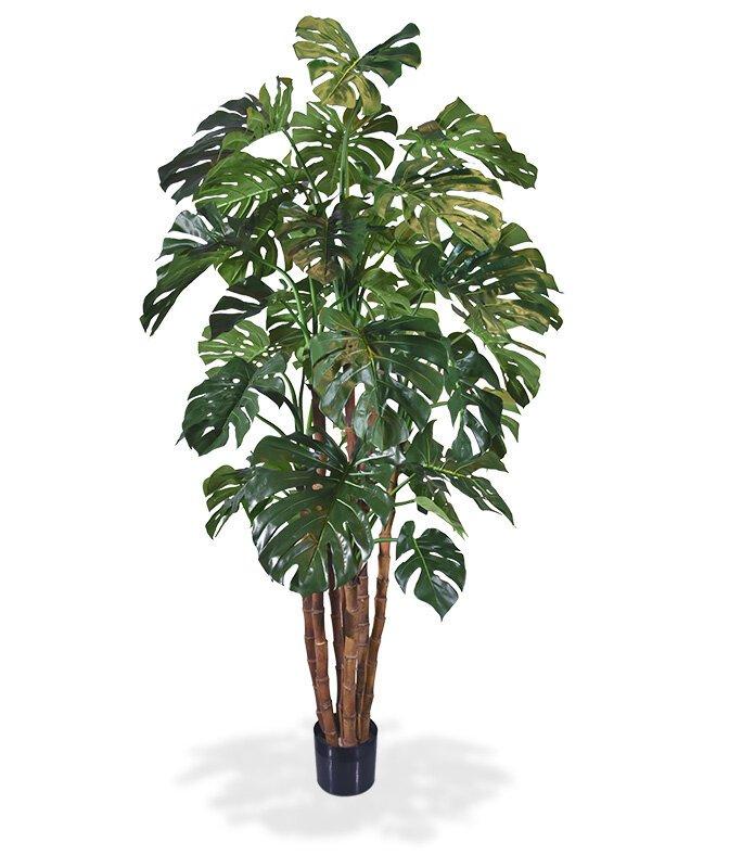 Umelá rastlina Monstera 210 cm