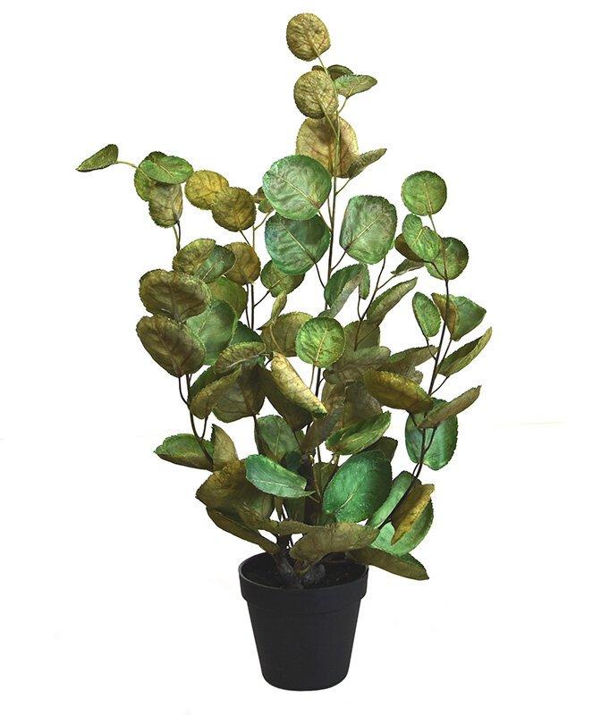 Umělá rostlina Aralia Polyscias 60 cm