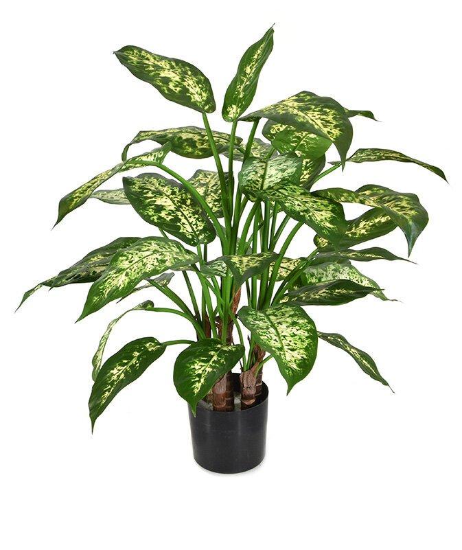 Umelá rastlina Dieffenbachia 60 cm
