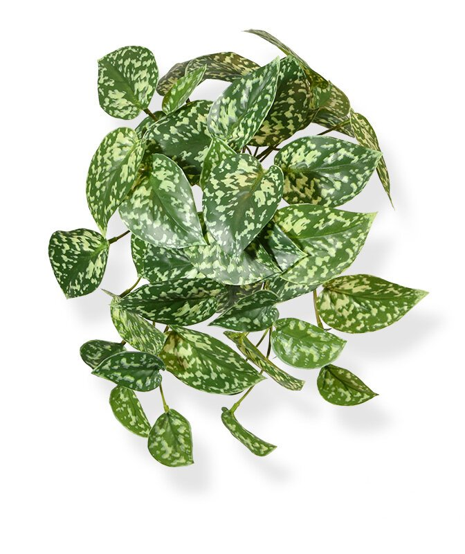 Umelá závesná rastlina Pictus 25 cm