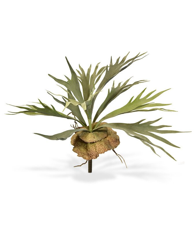 Umelá rastlina Parohovec 40 cm