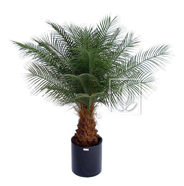 Umělá palma Datlová