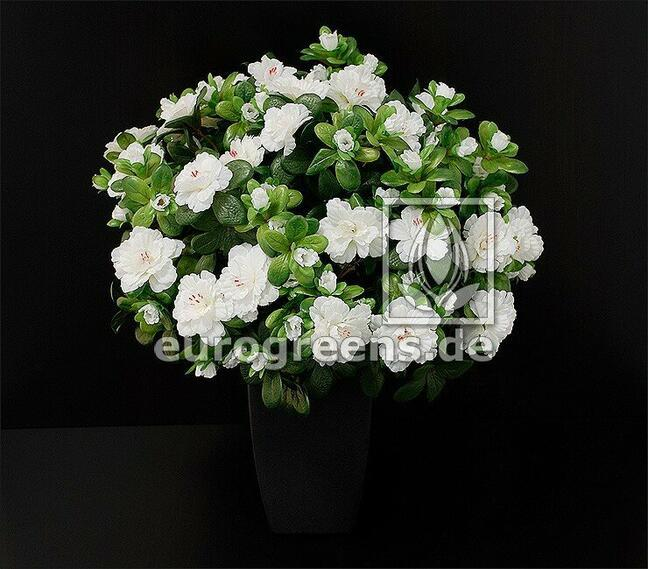 Umelá kytica Belgická Azalka biela 40 cm