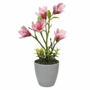Umelá Magnólia v kvetináči 21 cm