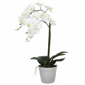 Umelá Orchidea biela 65 cm