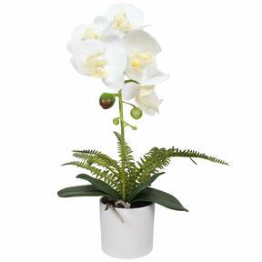 Umelá Orchidea biela s papraďou 37 cm