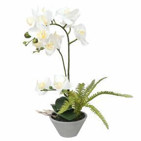 Umelá Orchidea biela s papraďou 43 cm