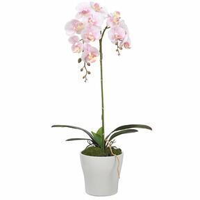 Umelá Orchidea ružová 53 cm