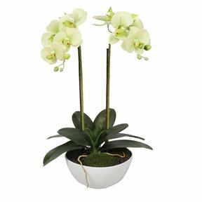 Umelá orchidea svetlozelená 50 cm