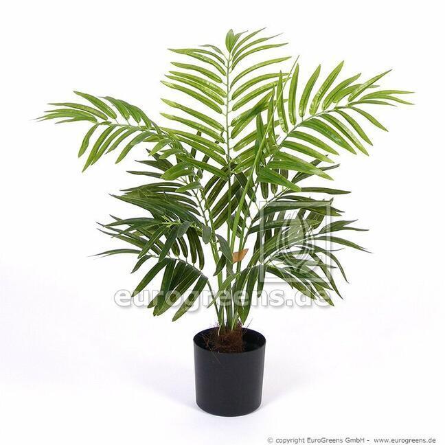 Umelá palma Areca 60 cm