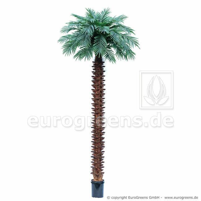 Umelá palma Butia capitata 400 cm
