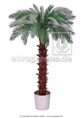 Umelá palma Cycas 300 cm