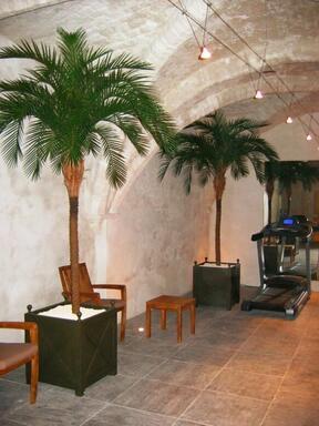 Umelá palma Datľová 300 cm