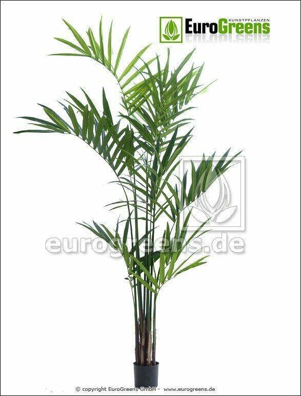 Umelá palma Kentia 240 cm