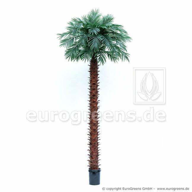 Umelá palma olejová 400 cm