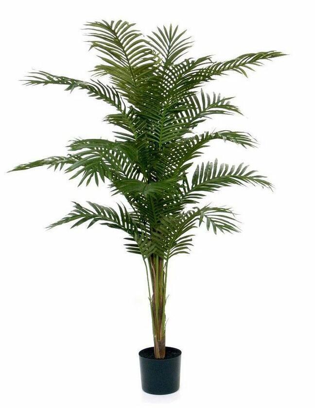 Umelá palma Paradise 180 cm
