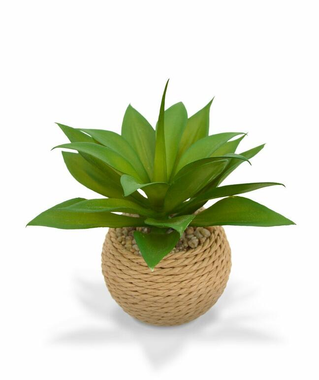 Umelá rastlina Agáve 15 cm