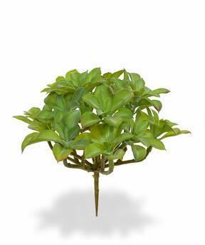 Umelá rastlina Beautertia 15 cm