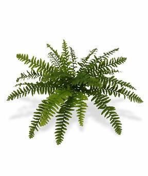 Umelá rastlina Bostonská papraď 40 cm
