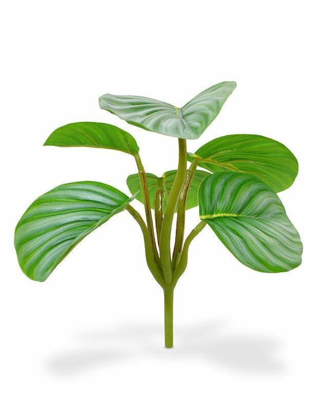 Umelá rastlina Calathea orbifolia 20 cm