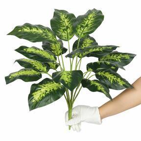Umelá rastlina Dífenbachia 50 cm