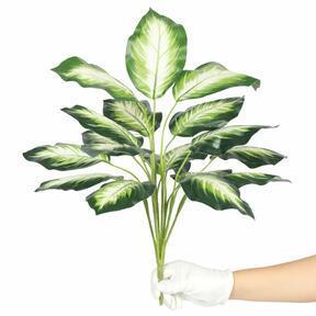 Umelá rastlina Dífenbachia biela 50 cm