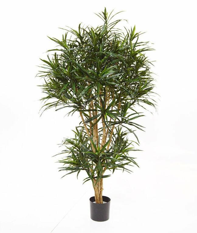 Umelá rastlina Dracéna reflexa 160 cm