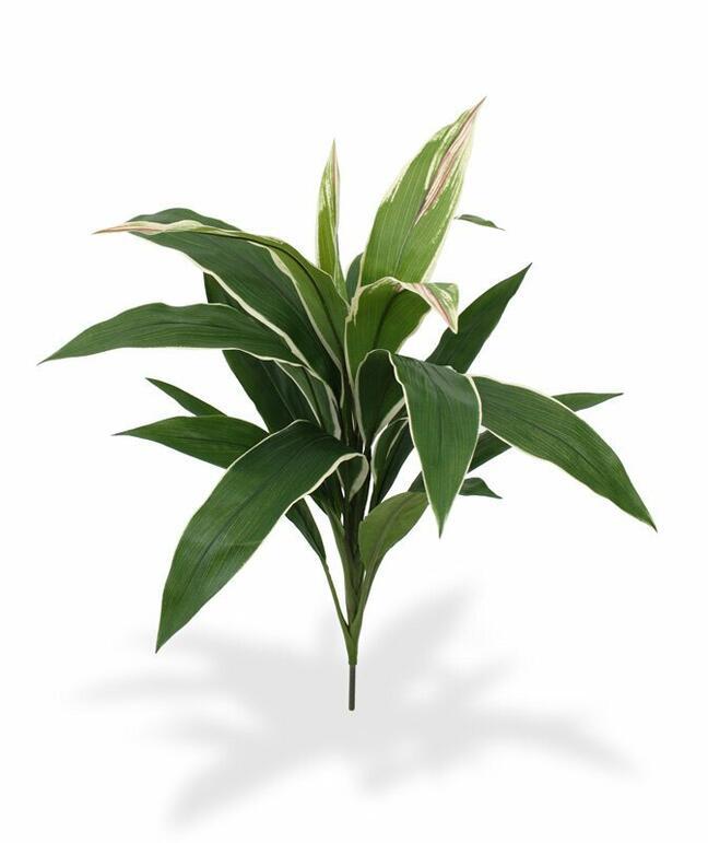 Umelá rastlina Dracéna voňavá 60 cm