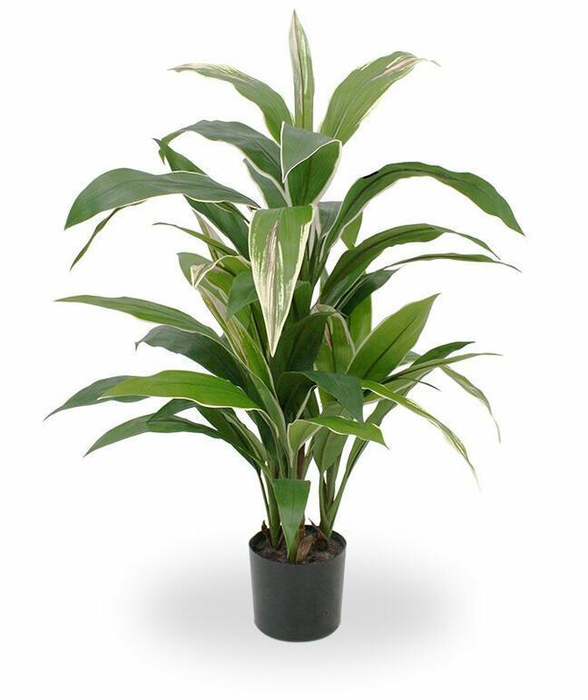 Umelá rastlina Dracéna voňavá 80 cm