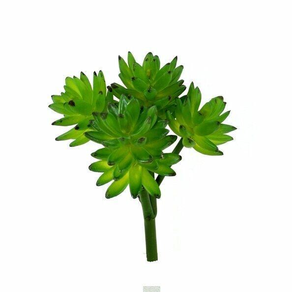 Umelá rastlina Eševéria 25 cm