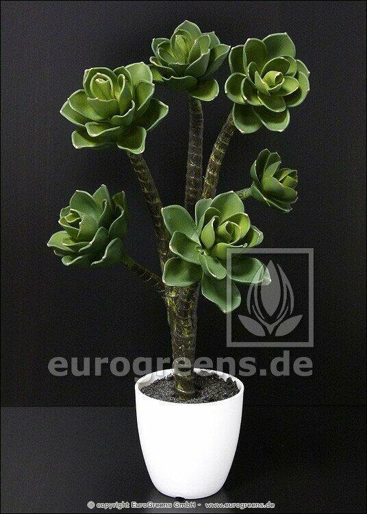 Umelá rastlina Eševéria 55 cm