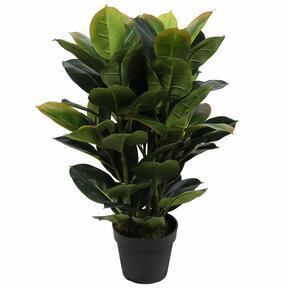 Umelá rastlina Figovník 75 cm