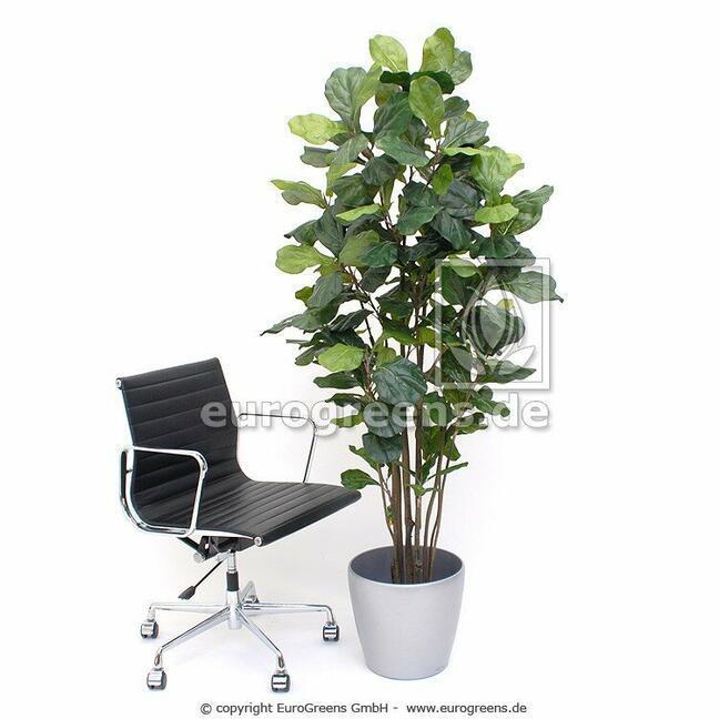 Umelá rastlina Figovník lýrovitolistý 180 cm