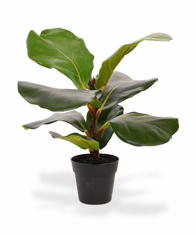 Umelá rastlina Figovník lýrovitolistý 30 cm