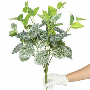 Umelá rastlina Fitónia biela 45 cm